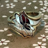 ring-07-17-2017-600